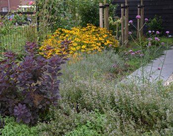 groei en bloei tuin