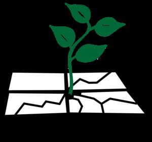 Operatie Steenbreek logo